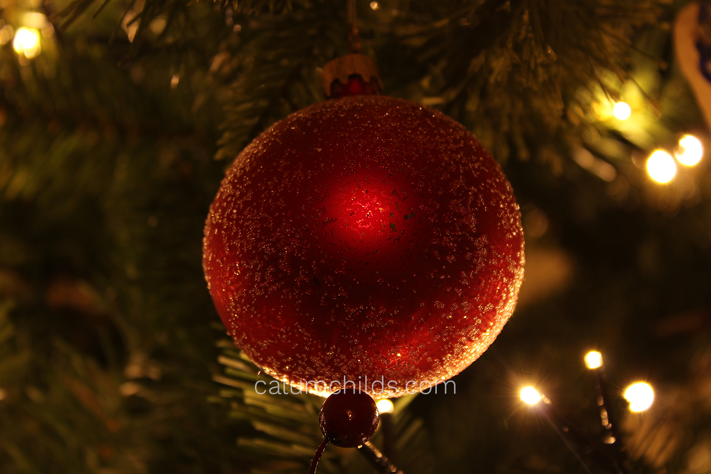 A red bauble is illuminated by some warm Christmas lights on a Christmas tree.