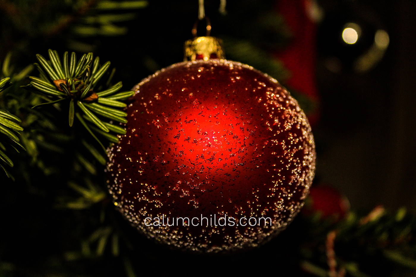 A red bauble hangs on a tree.